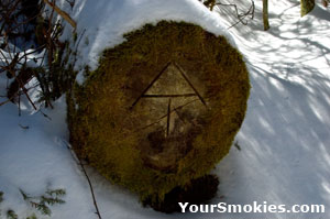 A log in winter with the Appalachian Trail Marking