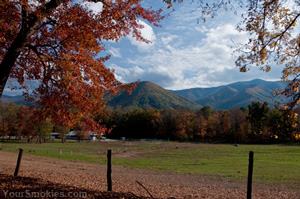 Cades Cove in the fall at dusk