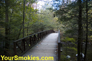 A Beautiful bridge on the Gatlinburg Hiking Trail