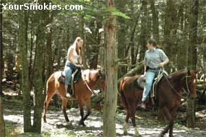 Horseback trail riding in the Smoky Mountains Park.