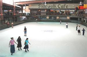 Skate indoors in the Smoky Mountains