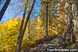 Fall at Alum Cave going up Mount LeConte.