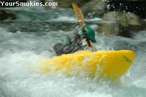 Kayaking in the Smokies for action packed fun.