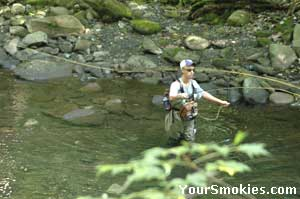 Many of the Smokies Mountains Fisherman fly fish