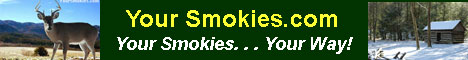 Your Smokies - NC Smoky Mountains Directory